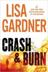 Crash & Burn novel